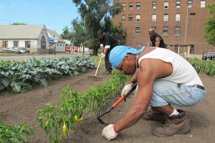 cidadoes de Detroit plantando e criando os proprios alimentos