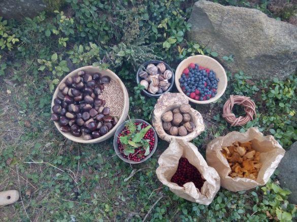 O que a floresta tirolesa ofereçe de graça: castanhas, berries, nozes e cogumelos. Os caramujos também tem, mas acho melhor deixar livres e vivos e nao comer...